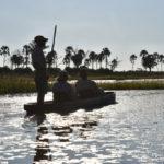 BOTSWANA – EN SLIPAD DIAMANT