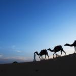 AL MAHA OCH LE MERIDIEN AL AQAH I DUBAI
