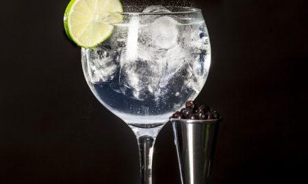 DRINKRECEPT: GT UTAN GIN