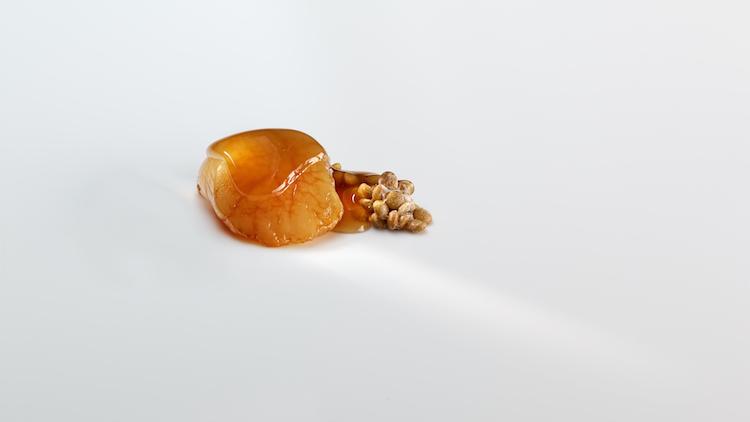 Spanien - Mugaritz, Nuéz de vieira atemperada con un consomé de lentejas agrias.