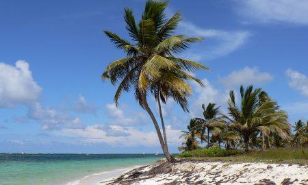 PÅ VÄG TILL DOMINIKANSKA REPUBLIKEN? HÄR ÄR NÅGRA TIPS!